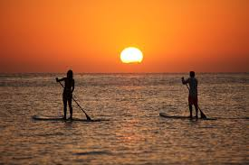 sup stand up paddle sunset
